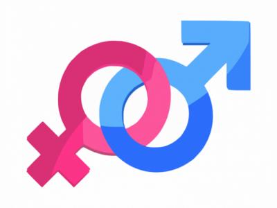 La igualtat de gènere a la UdG