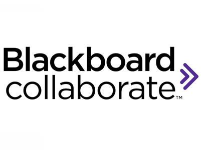BbCollaborate: nova graella de participants